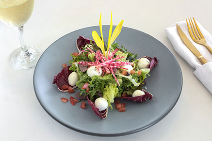 ventus food french salad 2